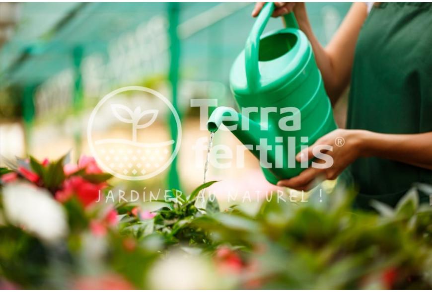 Comment jardiner sans produits chimiques ?