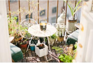 Que faire pousser sur un balcon ?