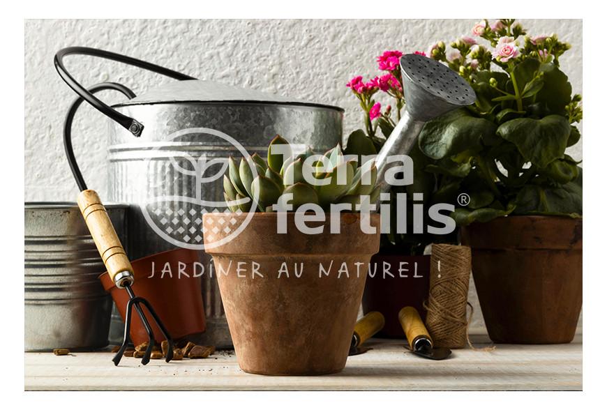 Les indispensables pour commencer à jardiner