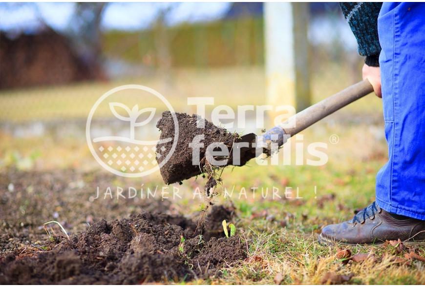 Préparer votre jardin pour le printemps à la fin de l'hiver